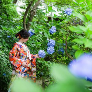 【和装ロケーション】新緑と紫陽花