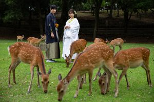 奈良公園【2】